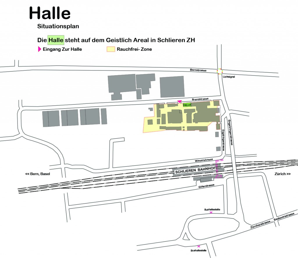 Situationsplan Halleli